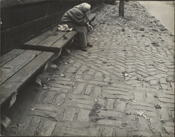 elderly-woman-seated-on-bench-central-part-nyc