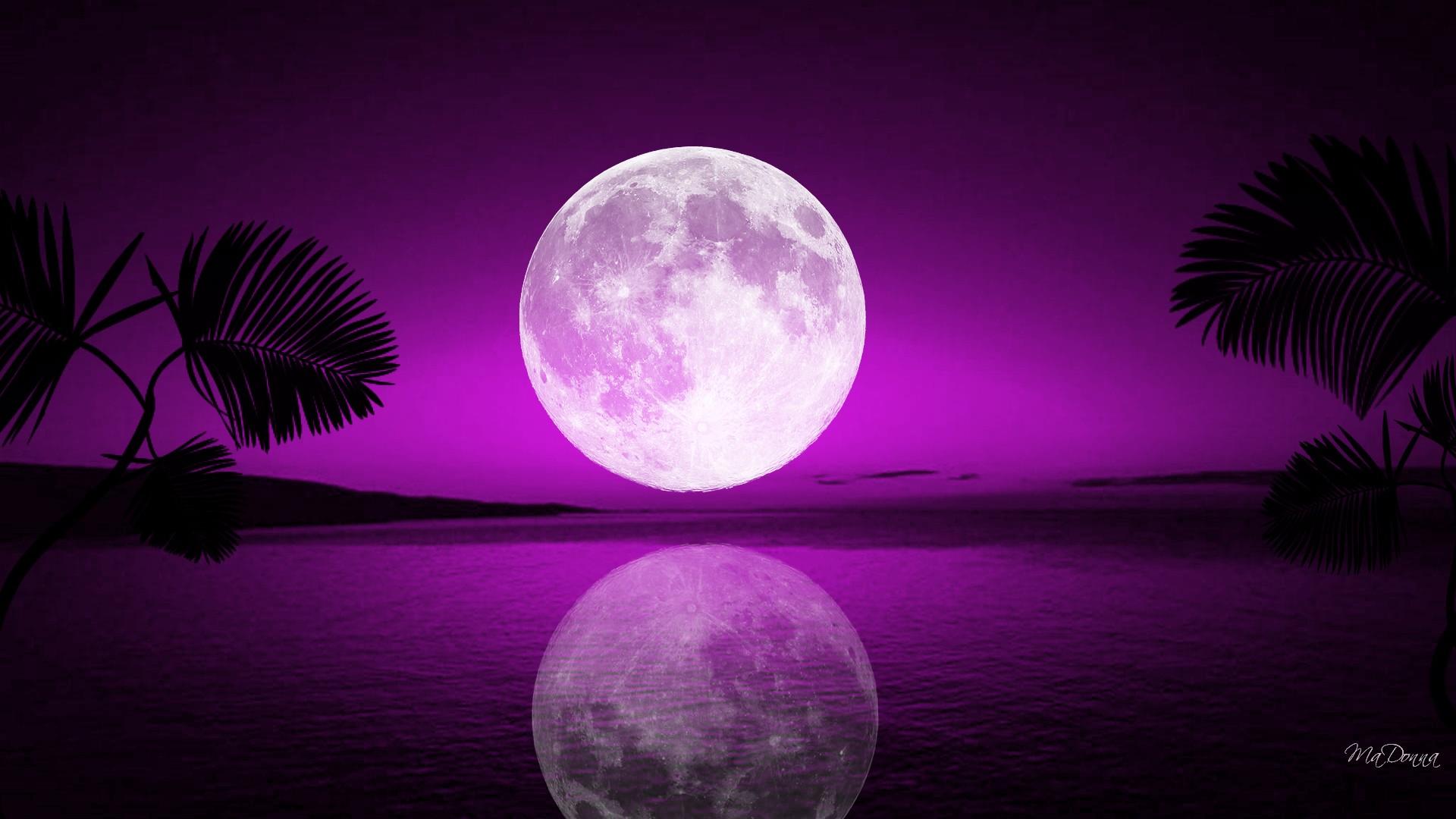 tropical-moon